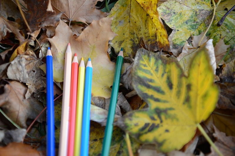 Autumn park colored crayons