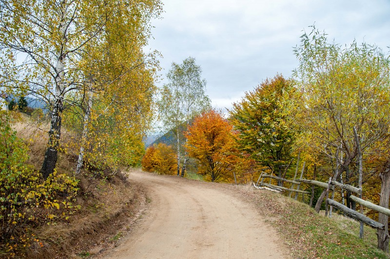 Autumn rural dirt road