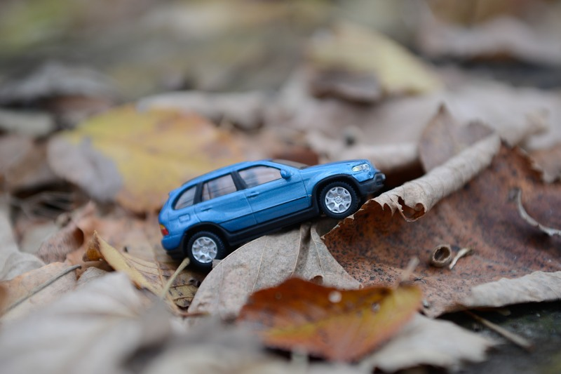 Blue jeep in leaves