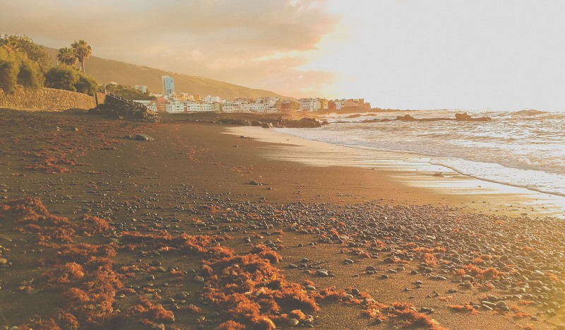 Dark sand beach in Tenerife