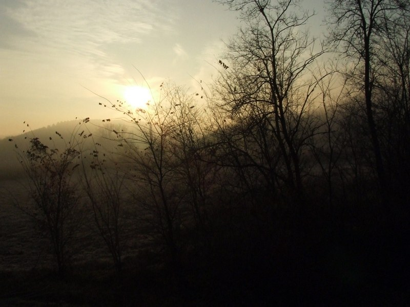 Sunrise in foggy morning