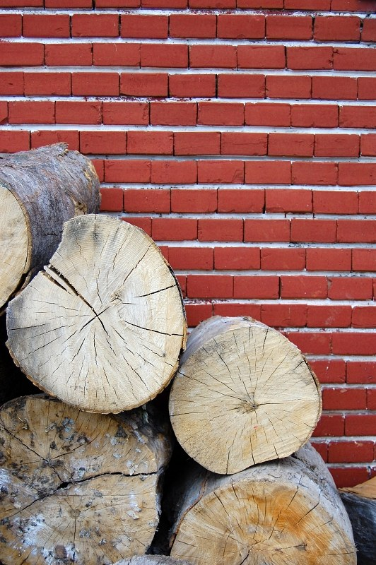 Wooden logs landscape