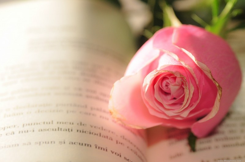 Blue rose book