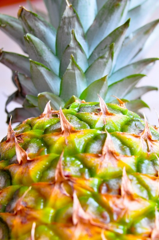 Exotic pineapple fruit