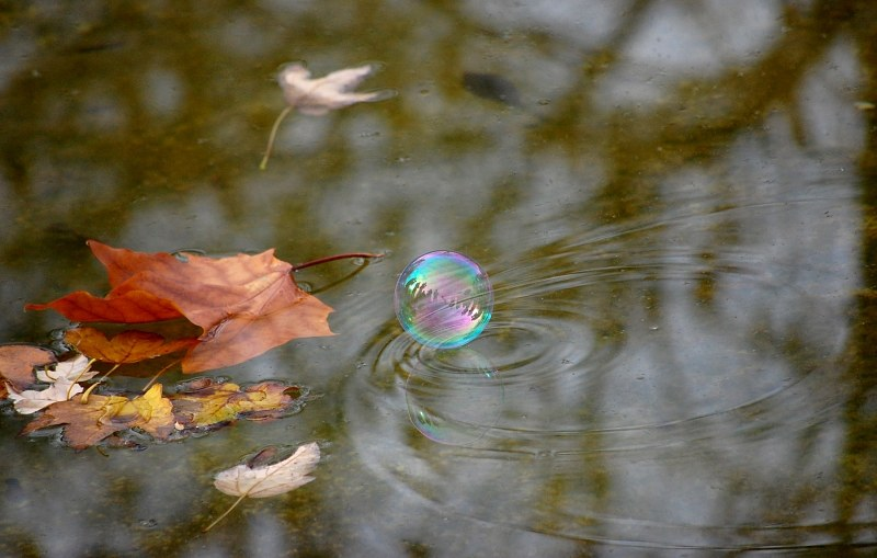 Soap bubble touching water surface