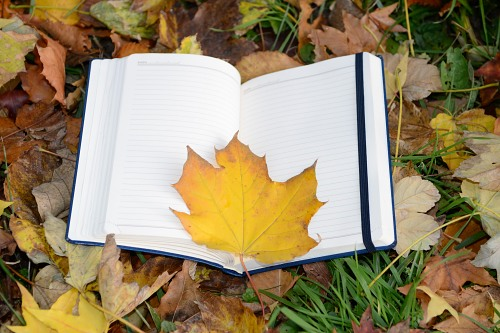 Autumn leaf open student notebook