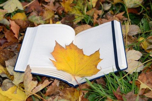 Autumn leaf opened notebook