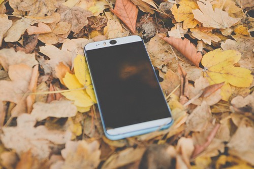 Autumn leaves smartphone