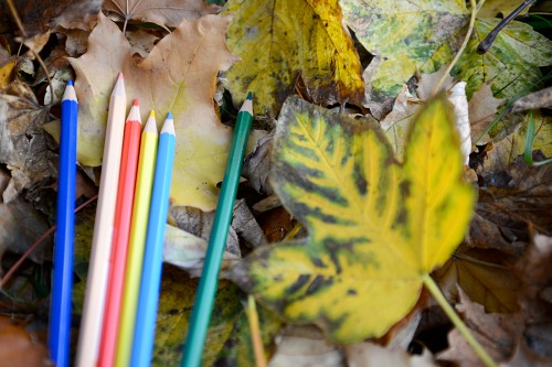 Autumn school crayons composition