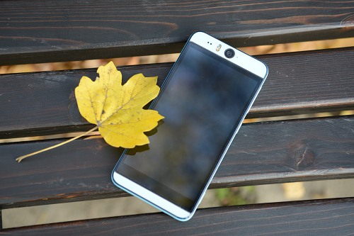 Autumn smartphone