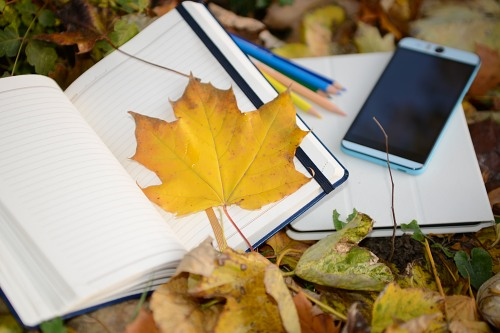 Autumn smartphone notebook student