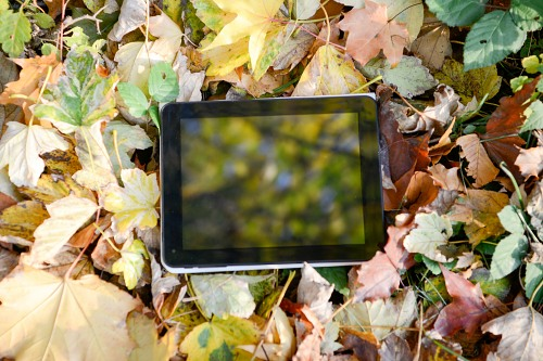 Autumn tablet composition