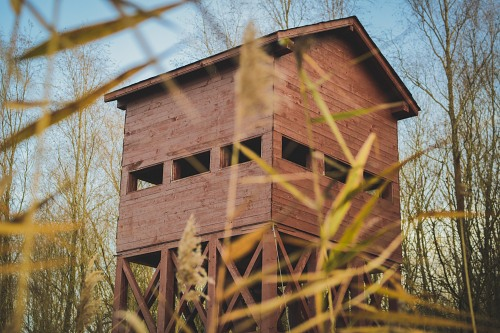 Bird watching tower in a reservation