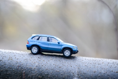 Blue car miniature on a branch