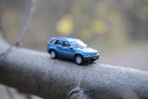 Blue miniature car forest