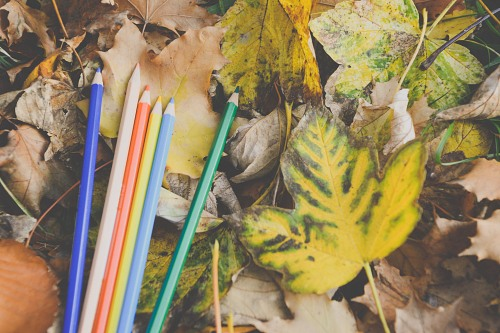Colored crayons autumn leaves