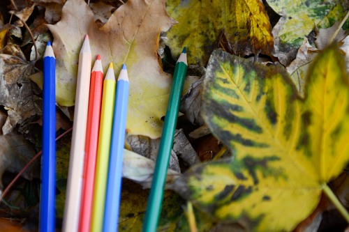 Crayons colors school autumn