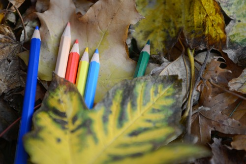 Crayons rusty leaves