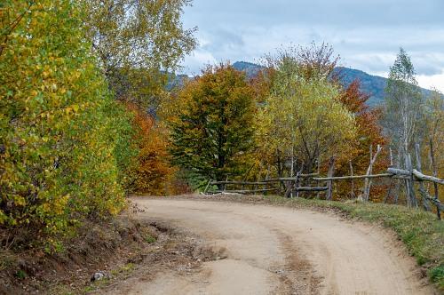 Dirt road curve