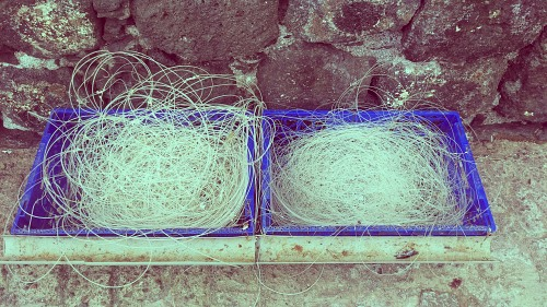 Fishing line in crates