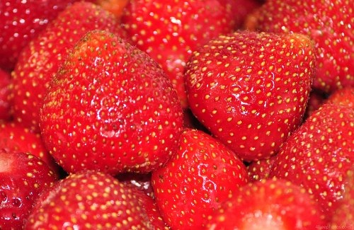 Fresh strawberry macro