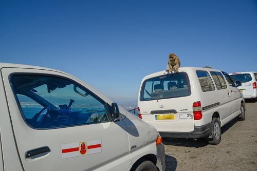 Gibraltar rock tourist vans