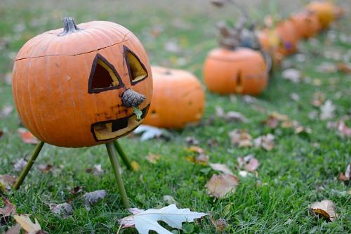 Halloween lantern legs