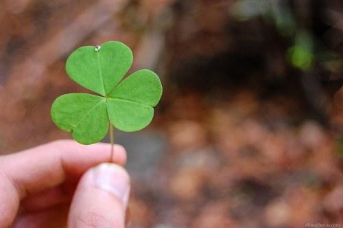Hand clover leaf