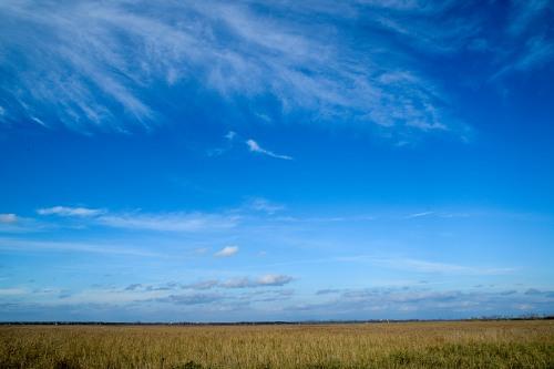 Horizon sky meadows