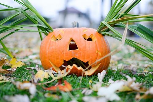 Lady halloween pumpkin