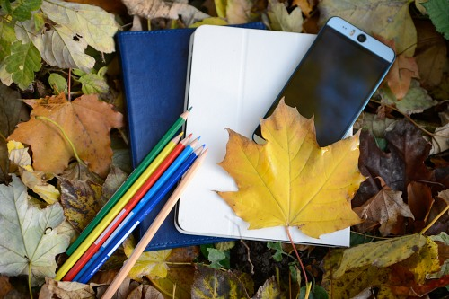 Mobile student notebooks and autumn leaves