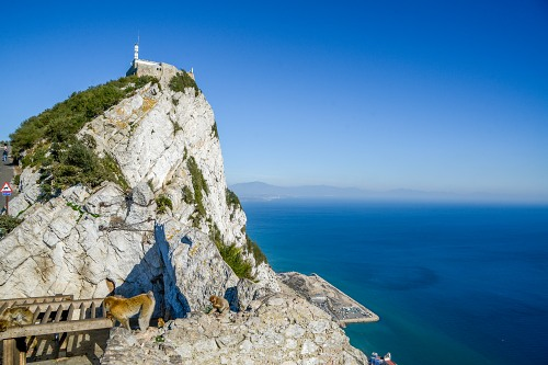 Monkeys rock of Gibraltar