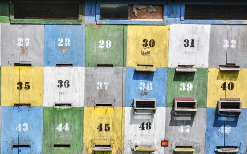 Multicolor bee hives with numbers