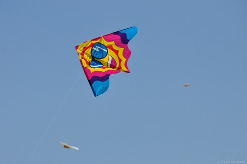 Multicolor kite flying