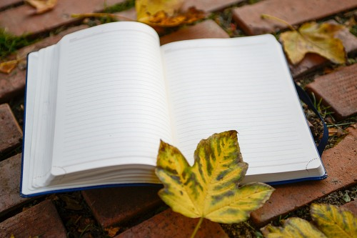 Notebook with open pages and leaves