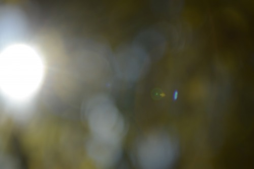 Out of Focus leichte flare