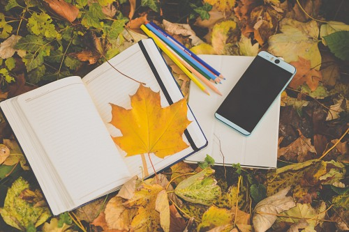 Student smartphone and notebook in park during autumn