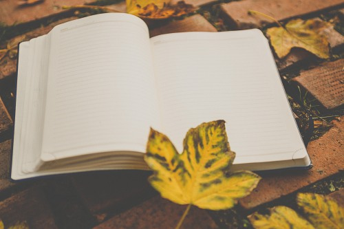 Students open notebook autumn
