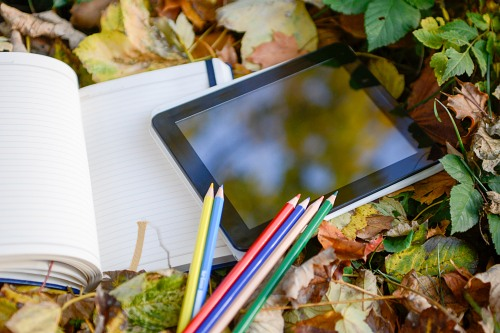 Tablet crayons and notebook on autumn leaves