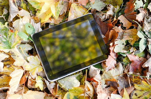 Tablet on autumn leaves background