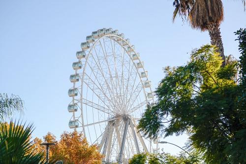 Tall ferris wheel