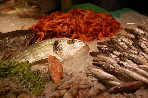 Fresh fishes for sale in a street market in ice