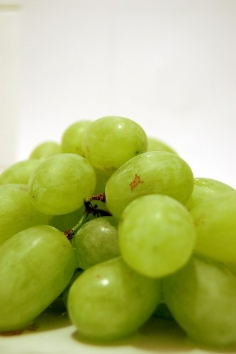 Landscape photo of grapes