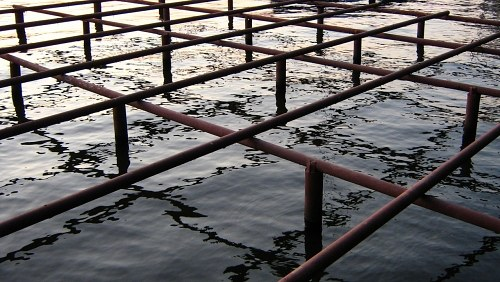 Metal structure over water