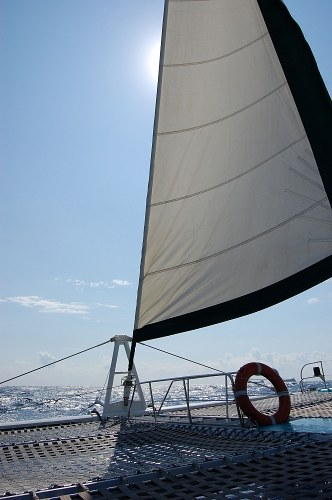 Sail of a catamaran with sun shining behind
