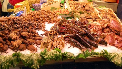 Seafood stand in a market