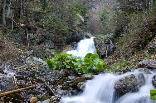 Free photos: Waterfall in the mountains