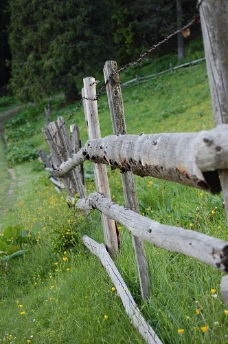 Free photos: Wooden fence