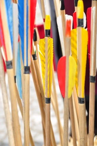Free photos: Arrows with multicolor stabilizers