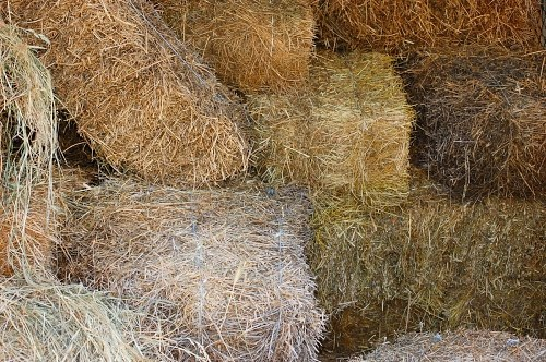 Free photos: Bales of hay